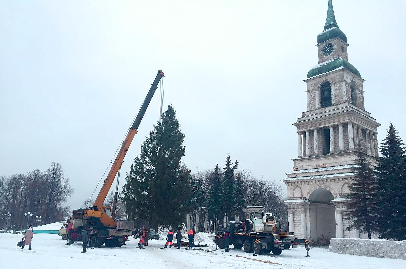 Посмотрите, какую елку привезли на Соборную площадь
