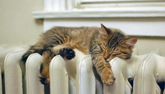 Жители Слободского сами решат, когда в их квартирах станет тепло