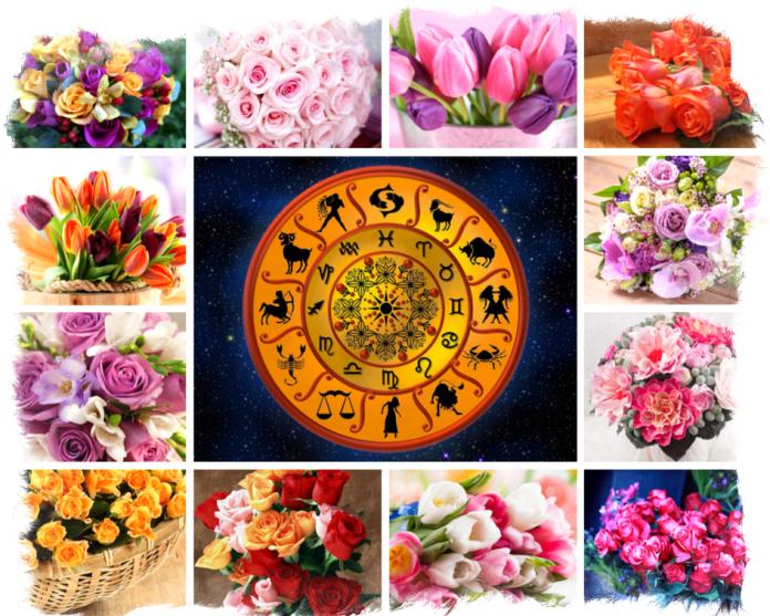 Цветочный гороскоп на 8 Марта