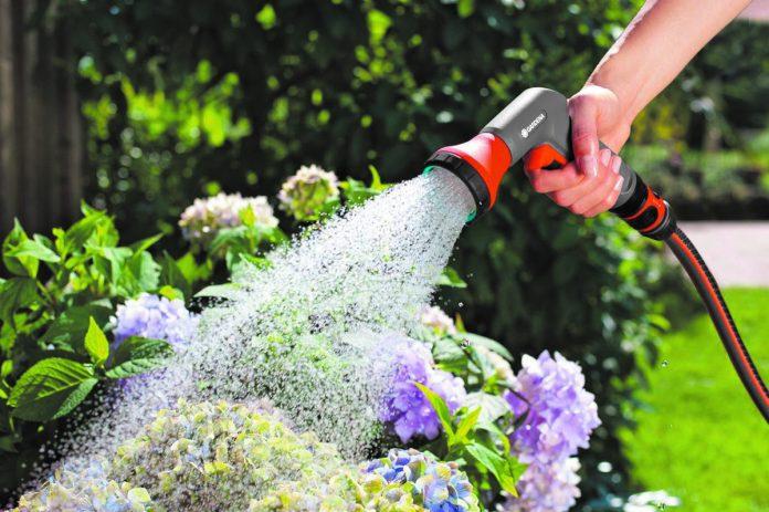 Советы садоводам. Как поливать растения в жару